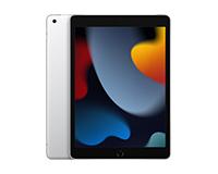 Silver iPad 9th Gen Silver